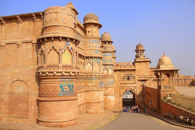 Taj-Fort-Palace Tour