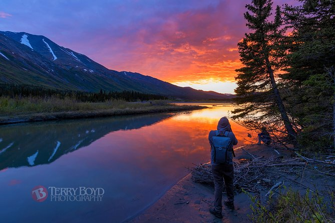 Midnight Sun Photo Excursion: Suitable for Social Distancing