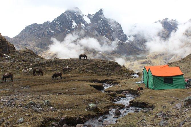 Lares Tour to Machu Picchu (8 Days)