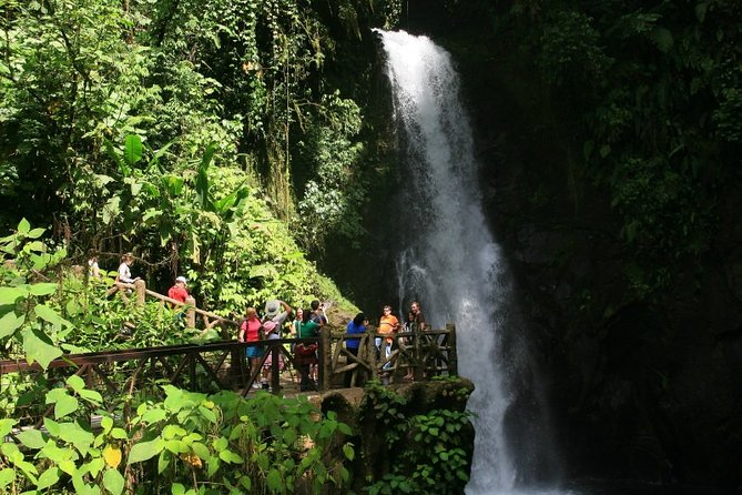 Entrance to La Paz Waterfalls with lunch and transportation