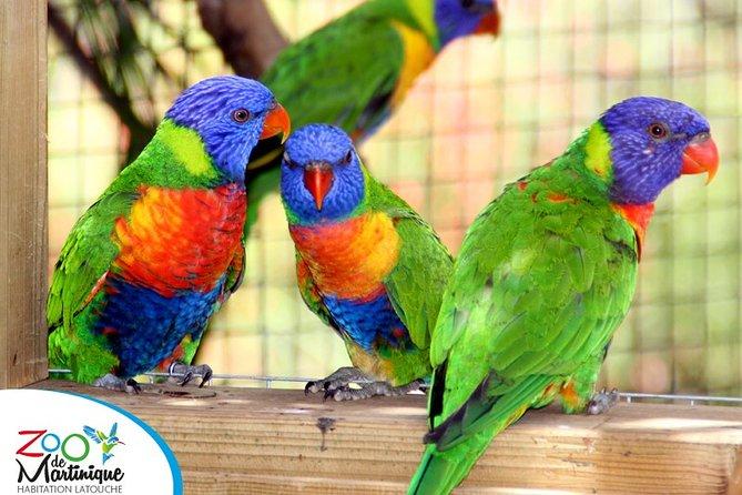 Zoo de Martinique - Habitation Latouche Admission Ticket