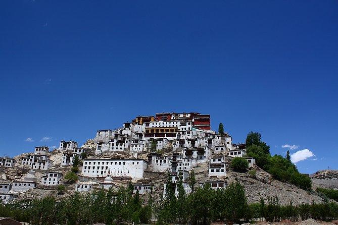 Full Day Leh Monasteries Tour (Shey, Thiksey & Hemis)