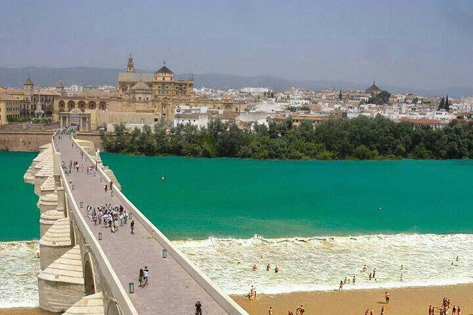 Cordoba private tour from Granada for up to 8 persons including the great Mosque
