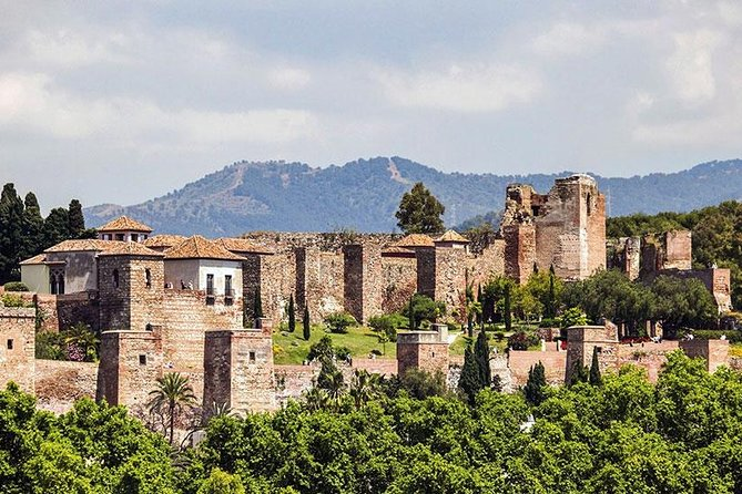 Malaga private tours and excursions from Granada for up to 8 persons