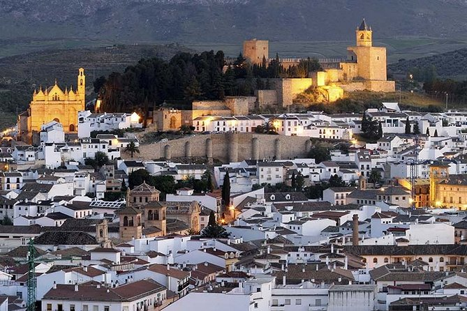 Private Seville tour and day trip to Antequera for up to 8 persons