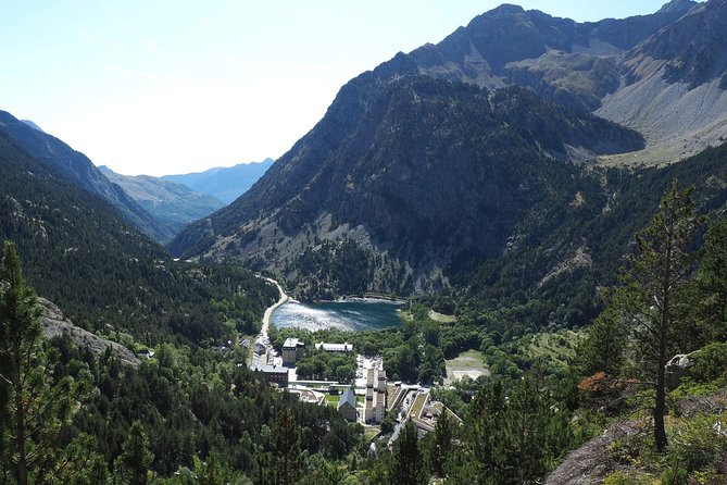 Spanish Pyrenees, an intensive workshop of medicinal plants (Private tour)