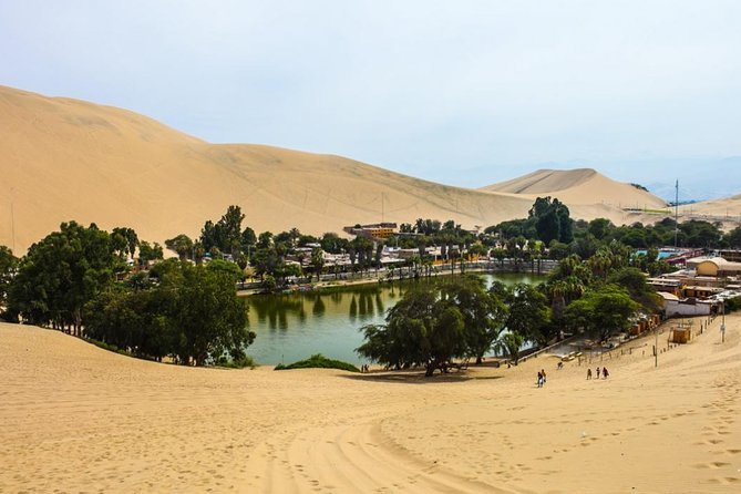 From Lima by bus: Ballestas, Winery & Huacachina