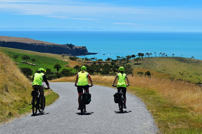 Coastal Cruise- Guided Electric Bike Tour in Akaroa