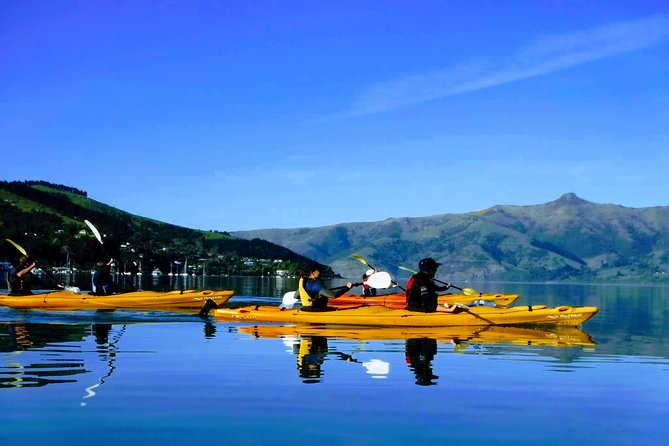Electric Mountain Bike & Sea Kayak Tour in Akaroa