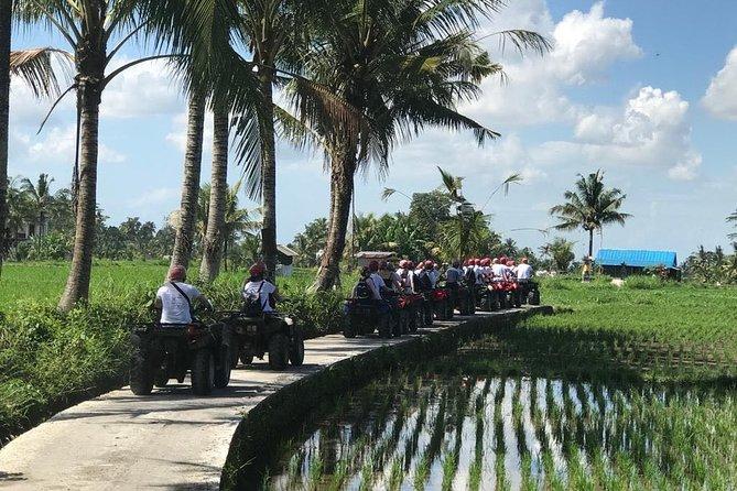 Bali Quad Biking In Ubud