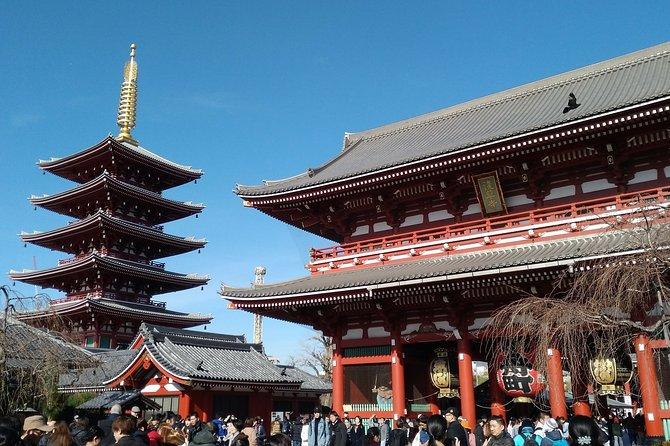 Basic Tokyo, One day Tokyo sightseeing tour
