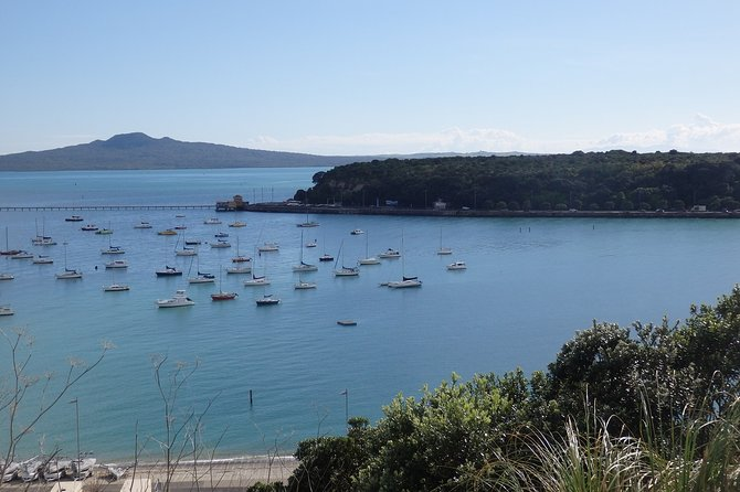 Shore Excursion: Full Day Small Group Auckland Scenic Tour - 8 Hours
