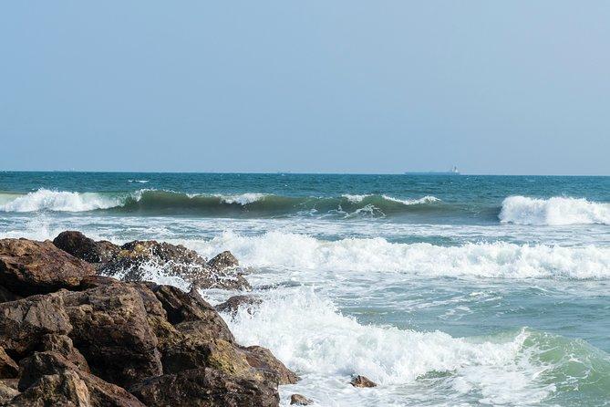Gopalpur Beach, Chilika Lake and Konark temple tour