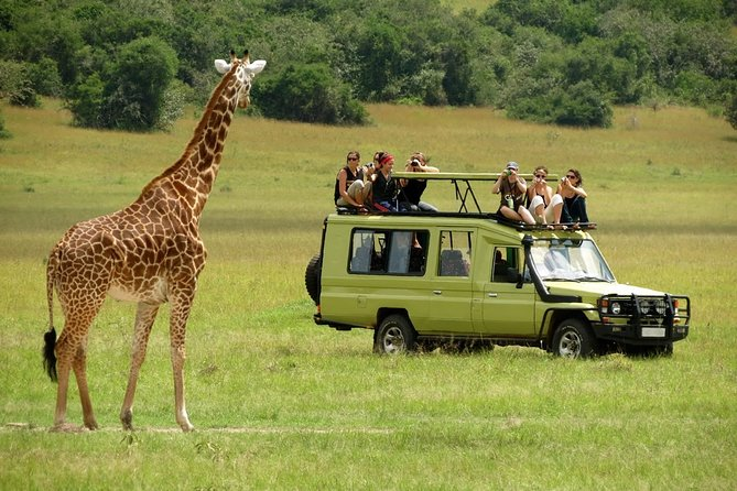 6-Day Private Safari Tour in Kenya from Nairobi with Meals