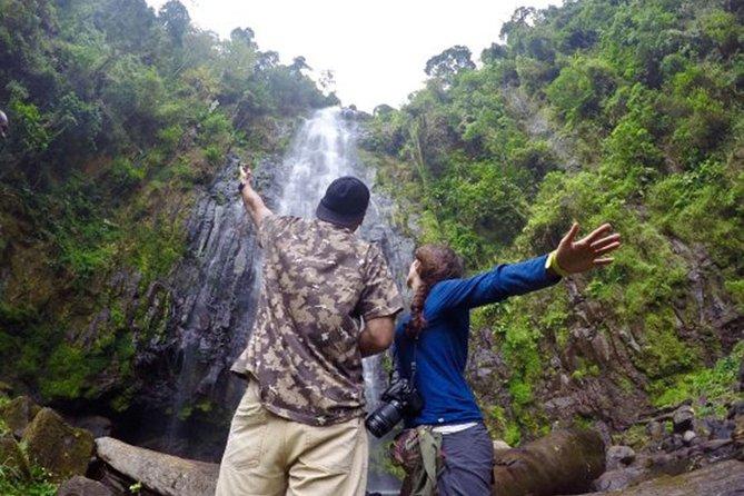 Materuni Waterfalls & Coffee Tour