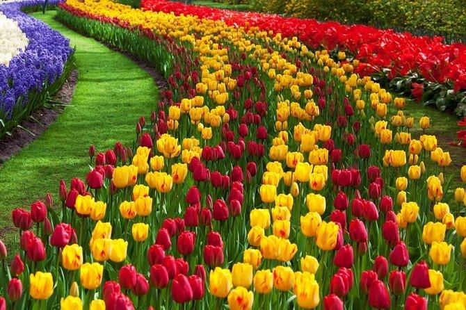 Treasure of Gardens