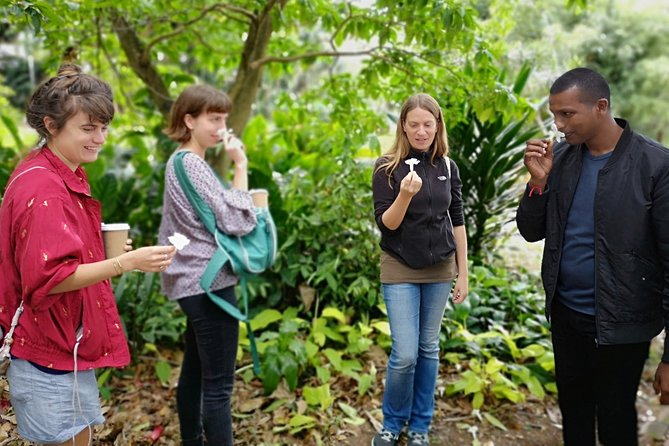 Durban in a Moment: Botanical Gardens, Tribal Museums & Traditional Markets