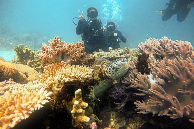 Semporna Island Hopping Day Trip Snorkeling (Boheydulang, Sibuan & Mantabuan)