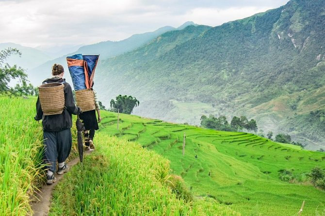Immerse in the real beauty of Sapa:local life,culture,roads,mountain&rice fields
