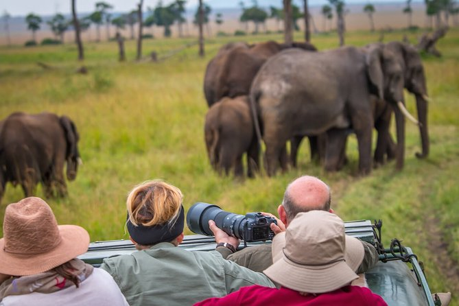 Luxury Elephant Trail Safari