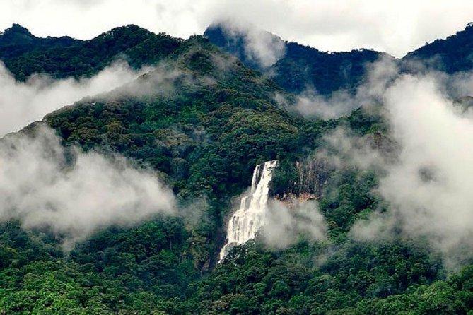 Сафари в парках Микуми, Руаха, горы Удзунгва, экскурсия в г. Иринга. 6 дн/5 ноч