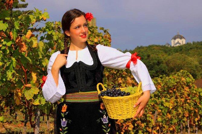 VISIT SERBIA: Topola, Oplenac, Royal Winery & Risovaca Cave - Private Tour
