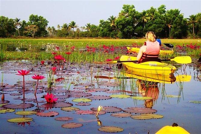 Backwater Kayaking Trail Goa
