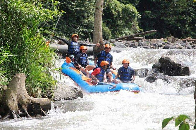 Telaga Waja White Water Rafting and Kintamani Volcano Tour