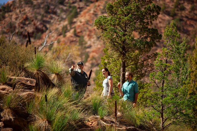 3-Night Wilpena Pound Getaway Including Scenic Flight and 4WD Tour