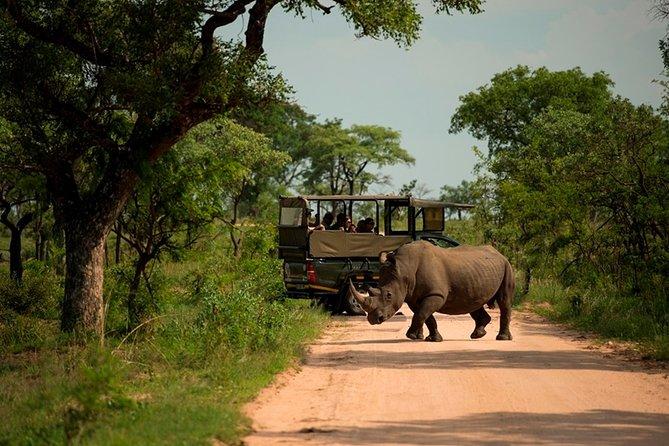 3-Day Kruger National Park Big 5 Backpacker Safari