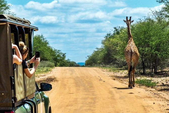 5-Day Kruger National Park & Panorama Route Tented Safari