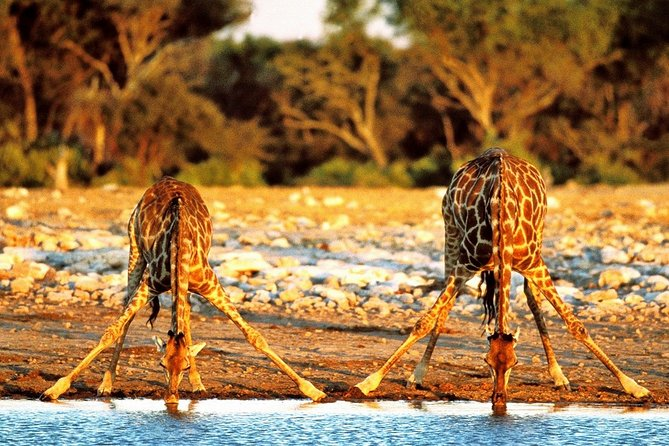 4-Day Kruger National Park & Panorama Route Backpacking Safari