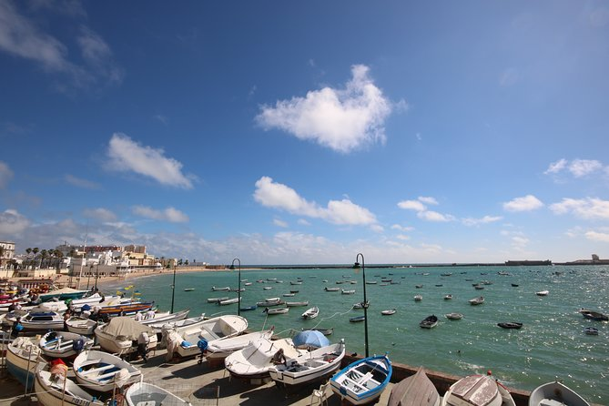 Cadiz Shore Excursion: Jerez & Cadiz Easy Accessible private tour & wine cellars