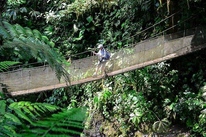Rainmaker Waterfalls and Hanging Bridges from Manuel Antonio