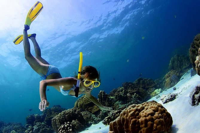 Full-Day Tour of Sian Ka'an Biosphere Reserve with Snorkeling