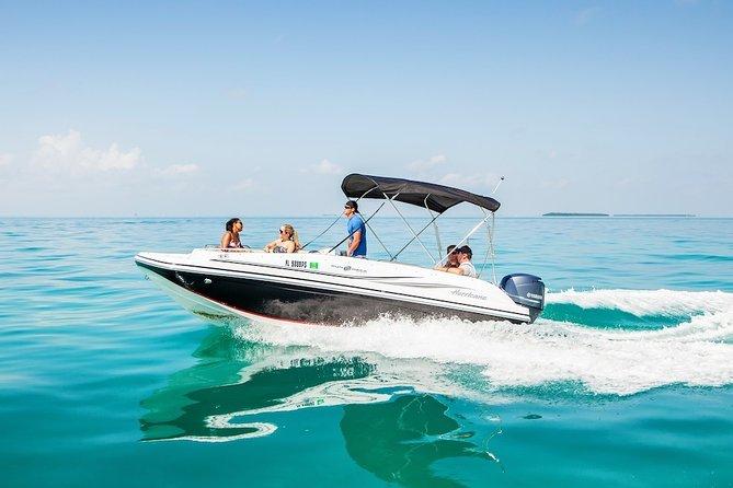 2Hr Private Boat Tour Miami Beach, Captain & Champagne, See the Island & Sandbar
