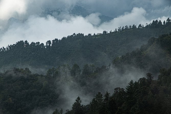Mussoorie Dhanaulti Tour from Delhi