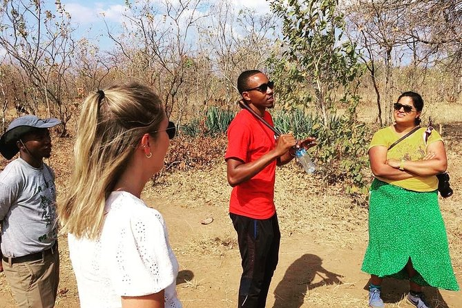 Maasai day trip