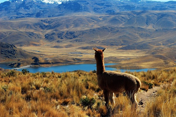 Panoramic Peru