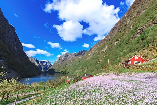 Guided day tour to Flåm - Rallarvegen Biking, Flåm Railway and RIB Fjord Safari