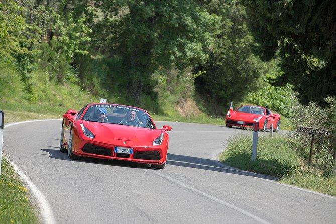 Bolgheri / Volterra / Florence-Tour in Ferrari