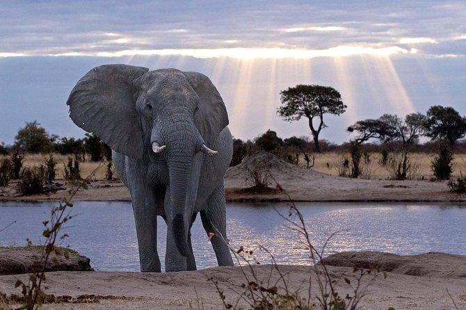 13 Day Botswana Ultimate Adventure