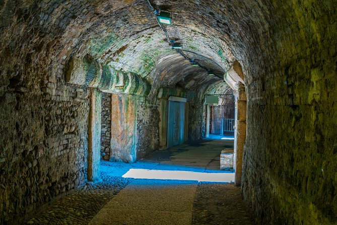 Fast track: Colosseum Underground tour with Forum and Palatine Hill
