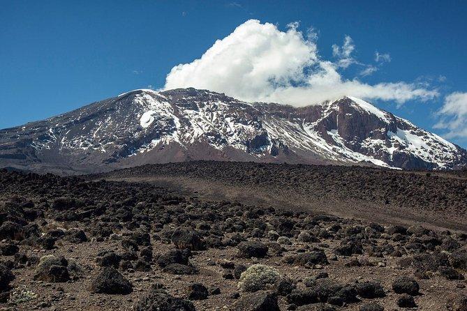 Mount Kilimanjaro Climbing Adventure, 6 days Machame Route