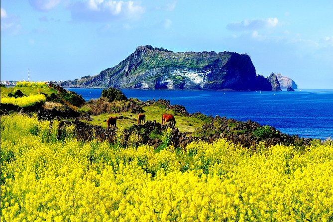 10-DAY Tour:Jeju Hiking,Rafting+ATV on Donggang River+Segway or Electric Bike