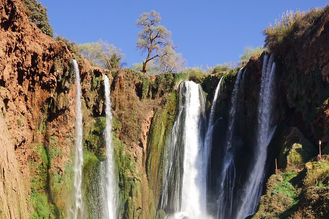 Full-Day Private Tour of Ouzoud Falls from Marrakesh