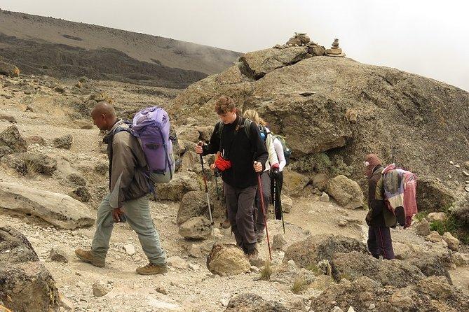 Machame 7 Days Kilimanjaro Climbing Tanzania