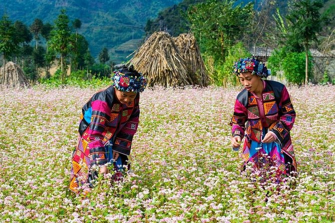 Private Full Day Dong Van trekking from Ha Giang