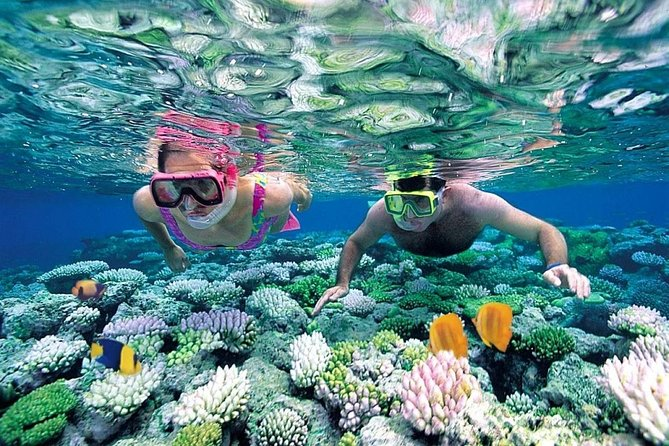 Full-Day Snorkeling at Marietas Islands with Lunch