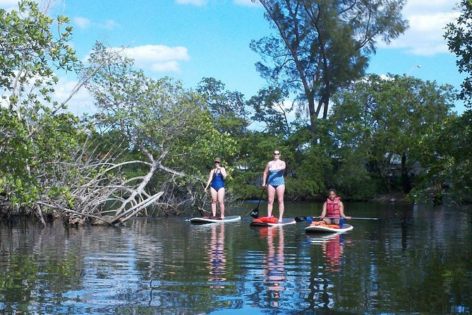 Island City ECO Paddle & Lesson: Explores Nature Preserve Tropical Wild Life